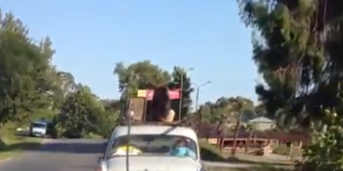 Perro viaja en el techo de un auto como si fuese equipaje