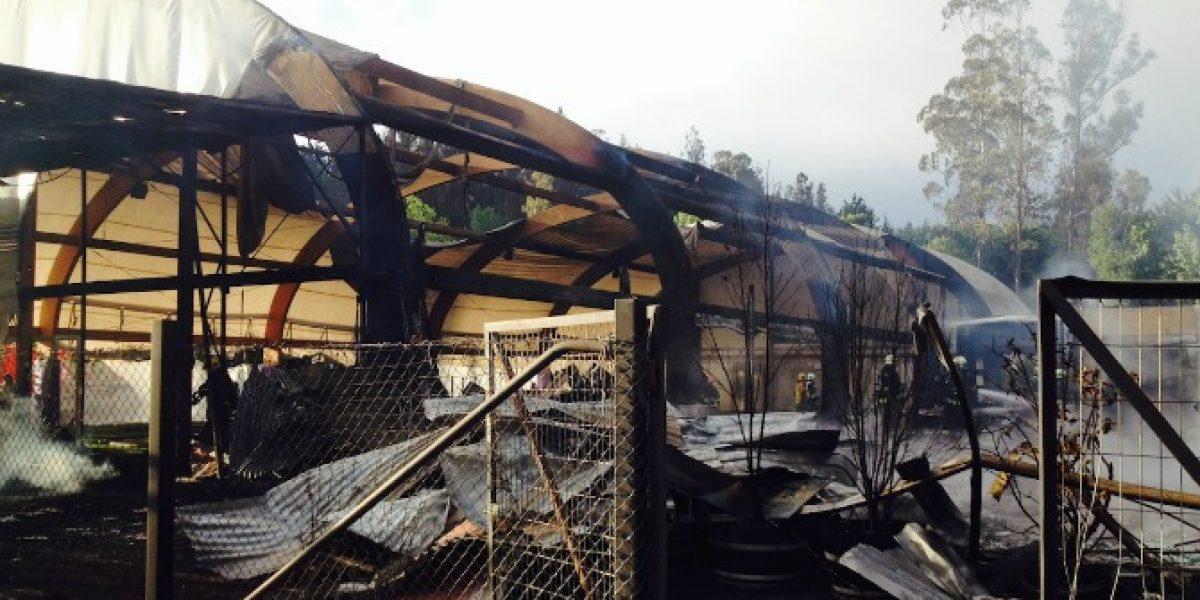 Incendio destruyó parte de las instalaciones de Deportes Concepción