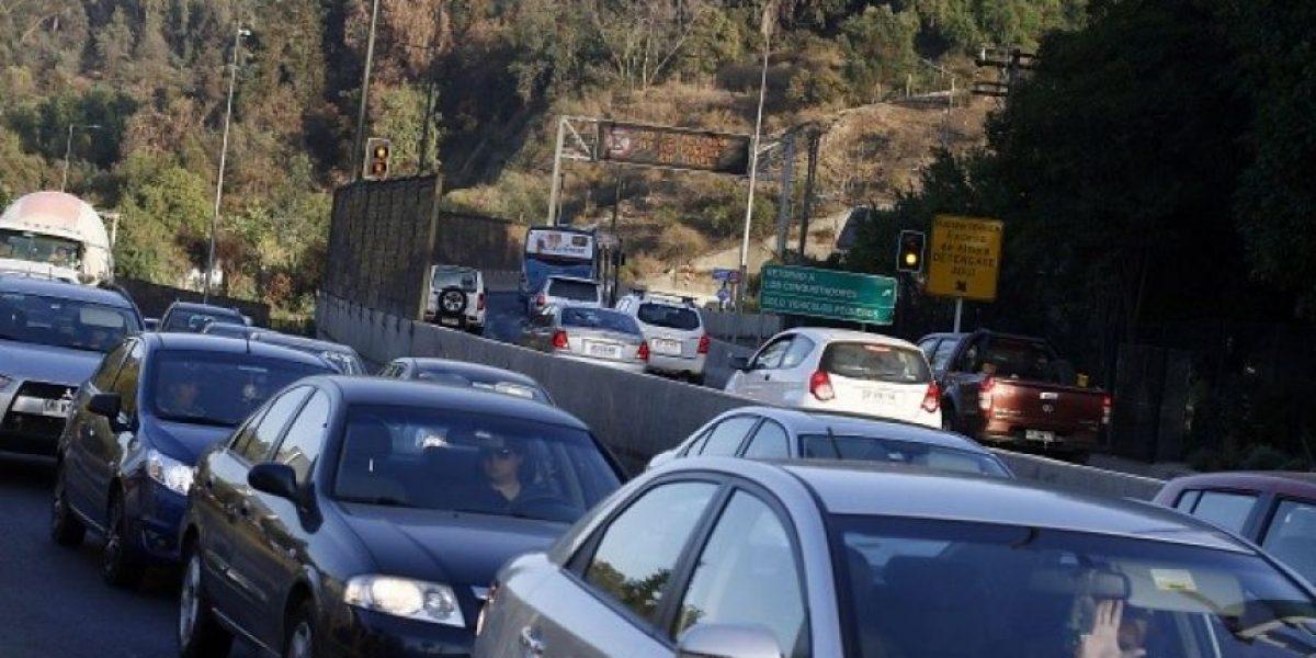 Seis caballos que intentaban ingresar al túnel San Cristobal fueron alejados de la autopista