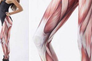De músculos. Foto:Poorly Dressed/CheezBurguer. Imagen Por:
