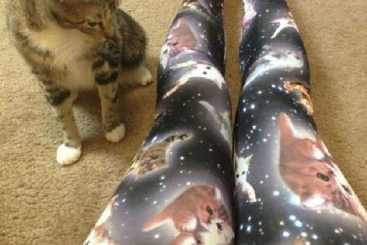 Leggings de gatos Foto:Poorly Dressed/CheezBurguer. Imagen Por: