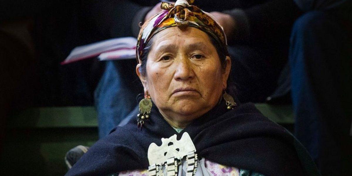 ¿Somos racistas?: 41,5% cree que Chile es un país más desarrollado porque hay menos indígenas