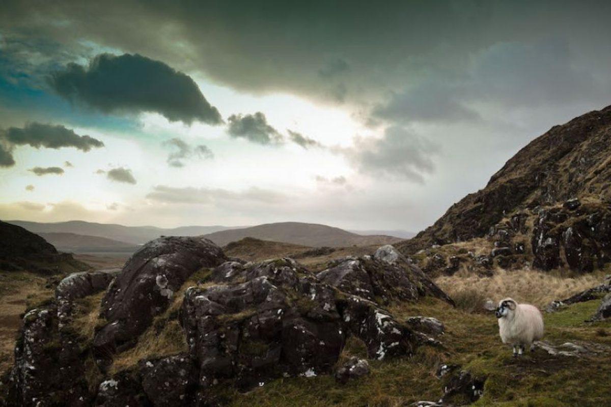 """""""Ireland – Co. Kerry"""". Marta Rondan.. Imagen Por:"""