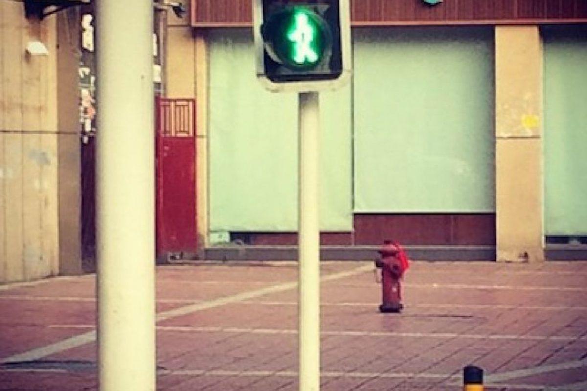Mianyang, China Foto:Instagram @andidapp. Imagen Por: