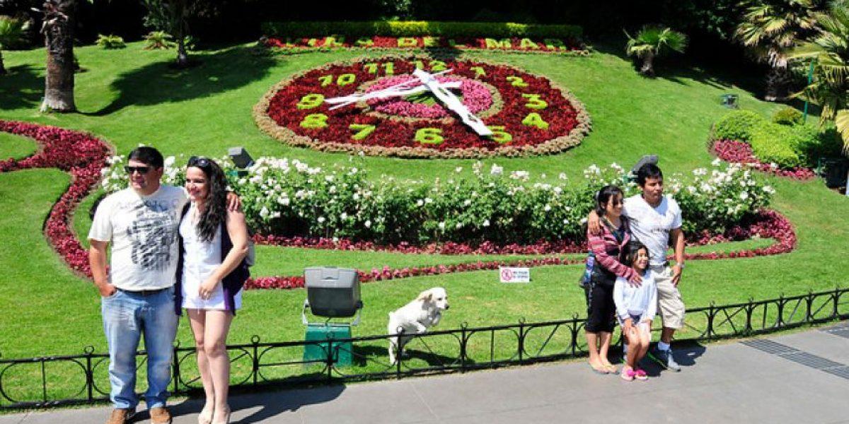 Jóvenes ebrios intervinieron el Reloj de Flores de Viña del Mar y alcaldesa anuncia acciones legales