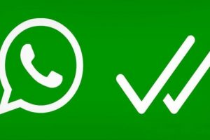 WhatsApp liberó una actualización de prueba con la que se puede eliminar el doble check azul. Foto:WhatsApp. Imagen Por:
