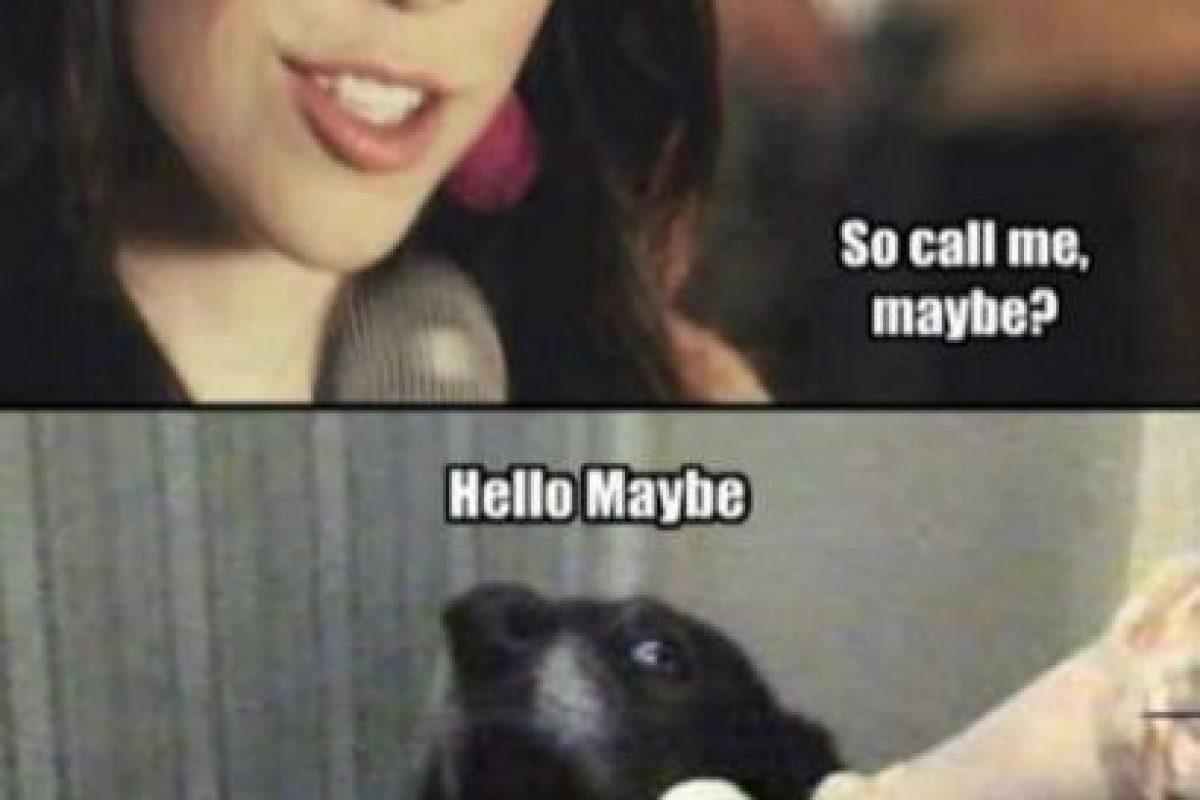"""Carly Jae Epsen también ganó fama con su canción """"Call me maybe"""" Foto:Cheezburger. Imagen Por:"""