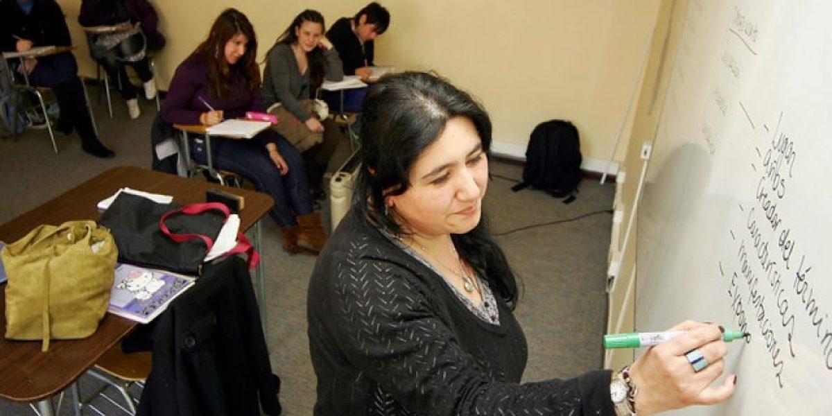 Estudio OCDE: profesores chilenos tienen bajo desarrollo profesional y sienten que su trabajo es poco valorado