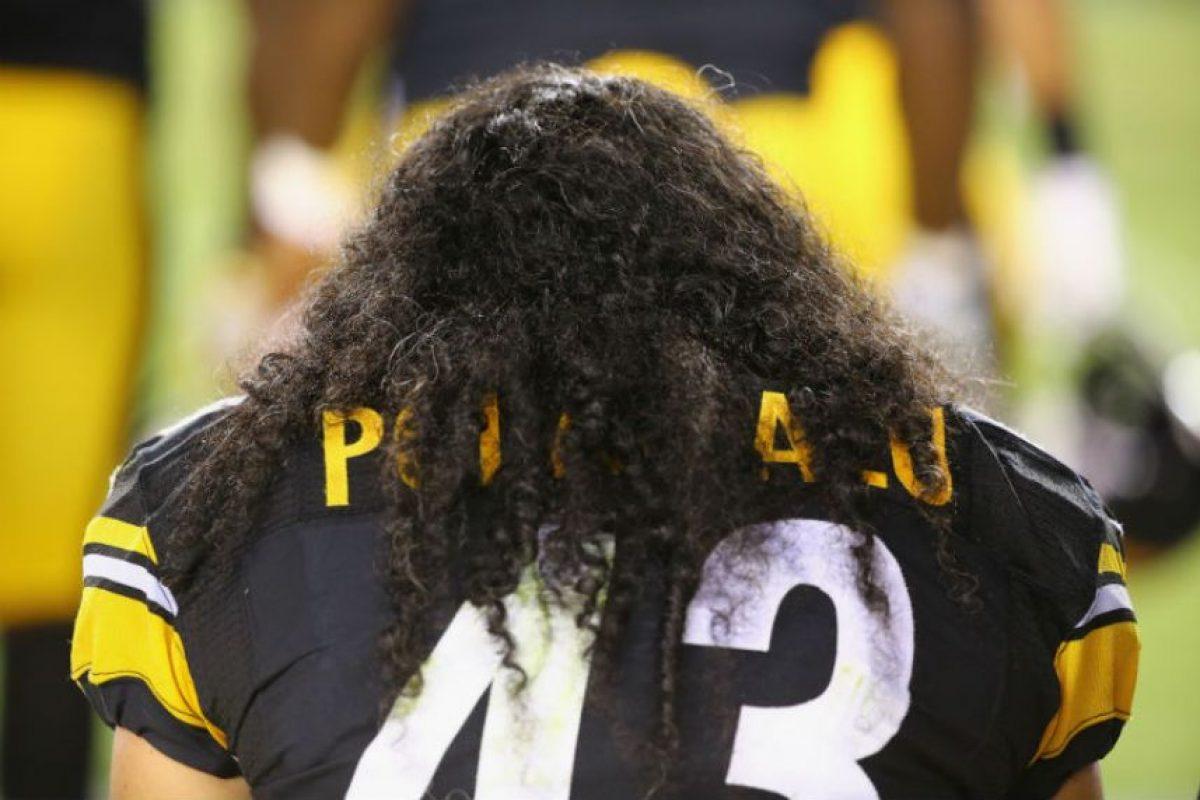 Troy Polamalu, defensivo de los Acereros de Pittsburgh, se caracteriza por su enorme cabellera Foto:Getty. Imagen Por: