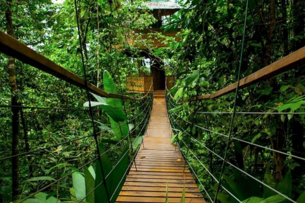 Es la Finca Bellavista y se encuentra en Costa Rica. Foto:Fincabellavista.com. Imagen Por: