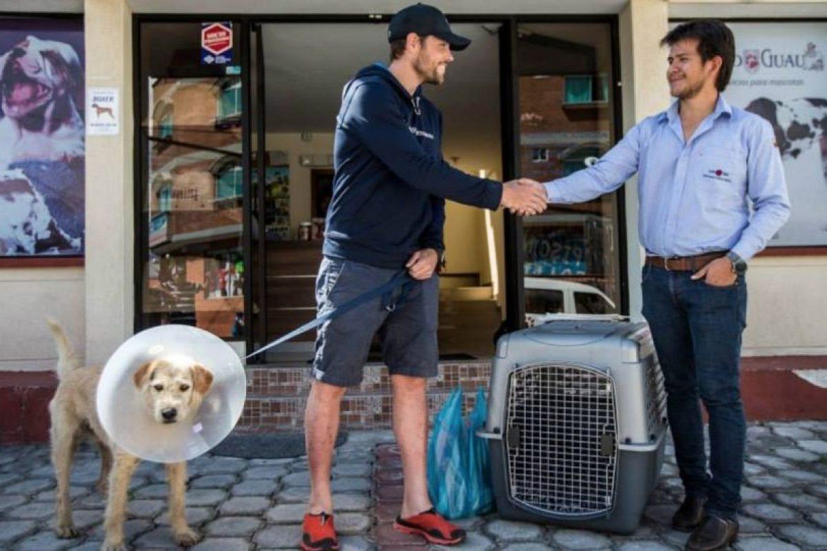 Arthur, el perro que se ganó el corazón de un equipo sueco de atletismo Foto:Team Peak Performance/Facebook. Imagen Por: