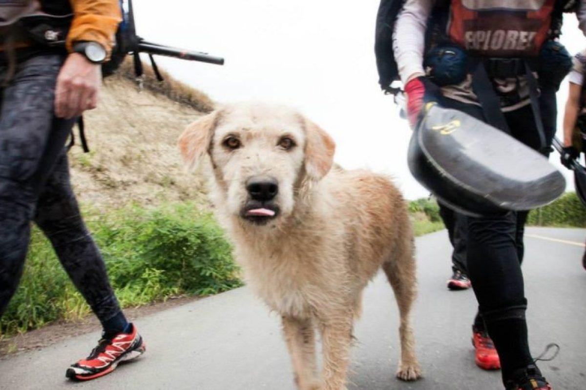 Arthur los siguió en toda la travesía Foto:Team Peak Performance/Facebook. Imagen Por: