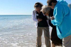 Hace poco tuvo la posibilidad. Foto:Perdido Beach Resort. Imagen Por:
