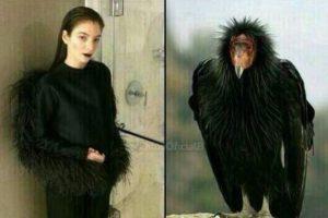 Lorde jamás pudo verse como algo más. Foto:Twitter. Imagen Por: