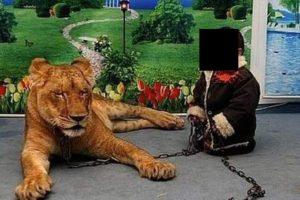 """Al lado del """"gatito"""" Foto:Twitter. Imagen Por:"""