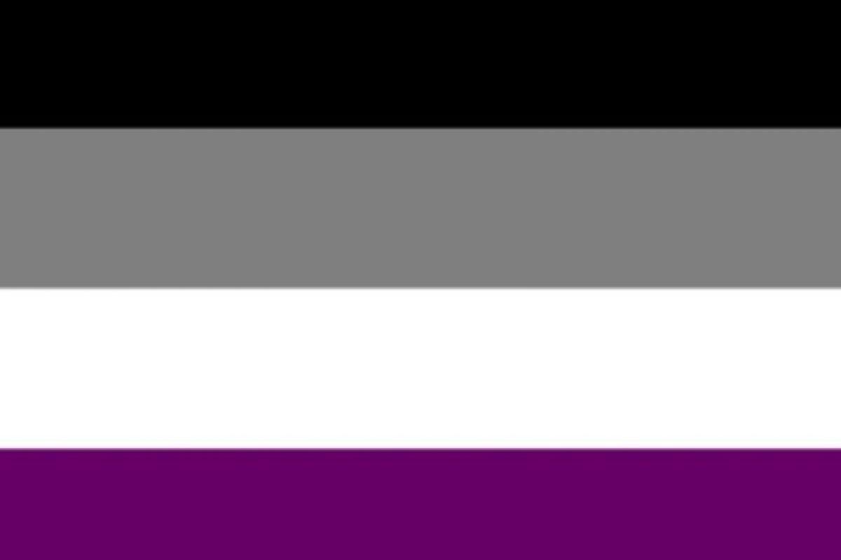 Pero no. Ellos tienen su propia bandera y colores (los de la foto). La gente cree que los asexuales son robots Foto:Tumblr. Imagen Por: