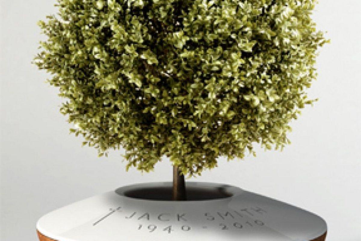 Una urna que funciona como maceta de una planta. Foto:poetreecreations.org. Imagen Por: