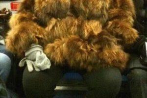 Le combina con el pelo. Foto:Poorly Dressed. Imagen Por: