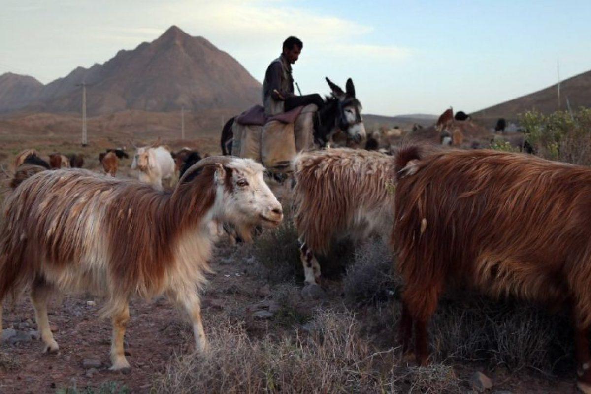 Fin: Pequeña localidad de la provincia de Hormozgan en Irán.En el lugar viven cerca de 800 familias y no existe información sobre el origen de su nombre, pero es una buena ciudad para poner término a la galería. Foto:Getty Images. Imagen Por: