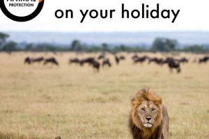 También hay leones Foto:Facebook/World Animal Protection. Imagen Por: