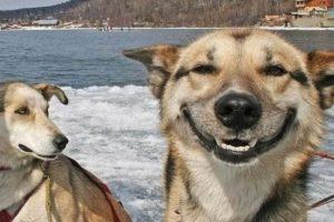 ¡Simplemente, feliz! Foto:Hudo. Imagen Por: