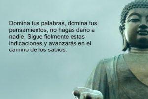 Foto:Planetaholistico.com. Imagen Por: