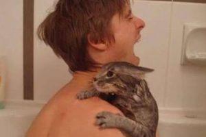 Y solo a él se le ocurre bañar al gato así. Foto:Oddee. Imagen Por: