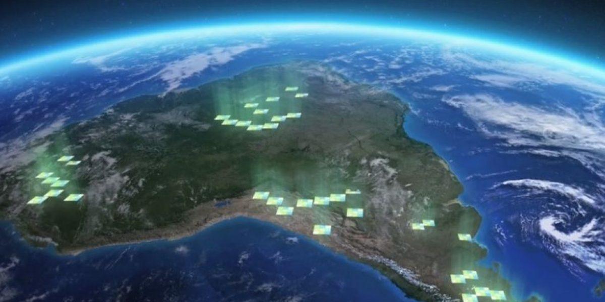 PIC: Chilenos crean una APP que ayuda a preservar y generar parques nacionales