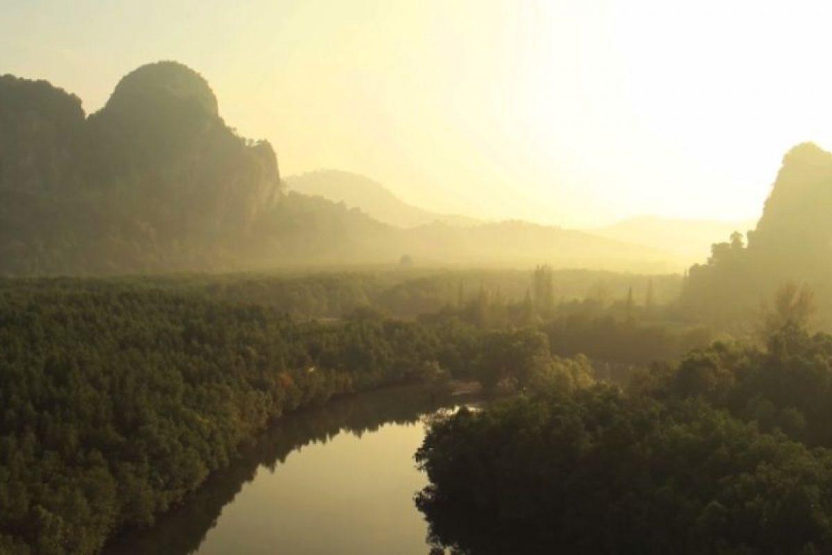 Foto:Captura de Pantalla Vimeo. Imagen Por: