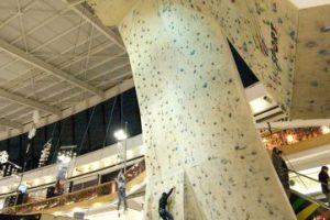 Foto:Mall Sport. Imagen Por: