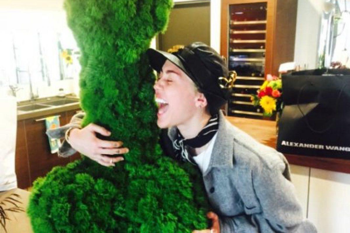 Mientras que Miley Cyrus es una aficionada a la Marihuana y muy popular en Hollywood. Foto:Instagram/Miley Cyrus. Imagen Por:
