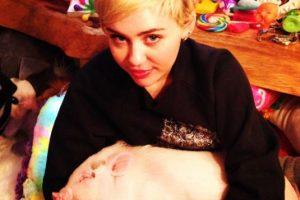 Aquí Miley con su cerdo Bubba Sue Foto:Instagram/Miley Cyrus. Imagen Por: