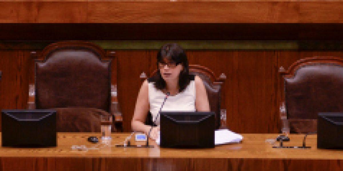 Ministra del Trabajo valoró aprobación unánime de la Cámara de Diputados a proyecto que regula jornada laboral del comercio