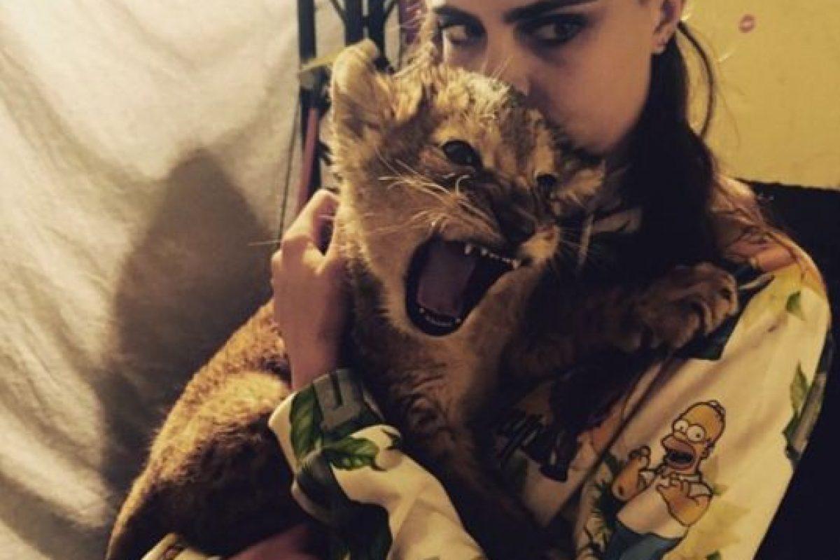 La modelo tuvo la oportunidad de convivir con este cachorro de león durante su sesión fotográfica. Foto:Instagram/Cara Delevingne. Imagen Por: