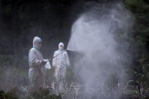 La fiebre del dengue es más frecuente en personas que viajan por el mundo. Foto:Getty Images. Imagen Por: