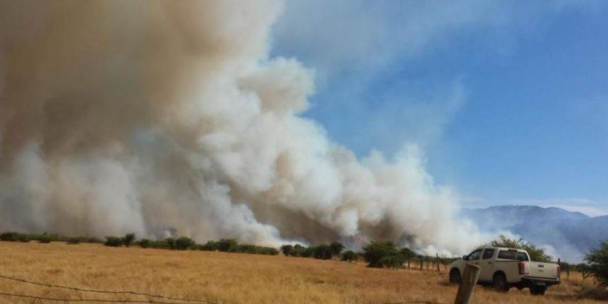 Incendio forestal en Santa Cruz obliga a decretar alerta roja