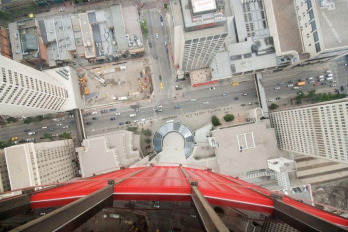 ¡Quiero ir abajo! Foto:Twitter. Imagen Por: