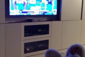 Así se disfruta el Australian Open. Foto:twitter.com/JelenaRisticNDF. Imagen Por: