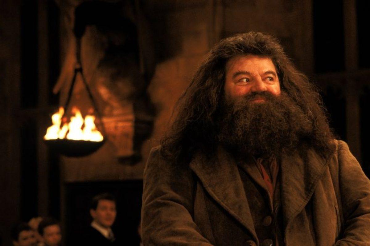 Su verdadero nombre es Anthony Robert McMillan Foto:Facebook/Harry Potter. Imagen Por: