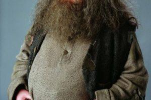 """Es un famoso actor británico que saltó a la fama mundial con el personaje de """"Hagrid"""" en la saga """"Harry Potter"""" Foto:Facebook/Harry Potter. Imagen Por:"""