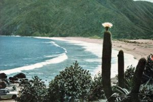 Panorámica playa grande de Quintay en el año 1967. Foto:Fotos Históricas de Chile. Imagen Por: