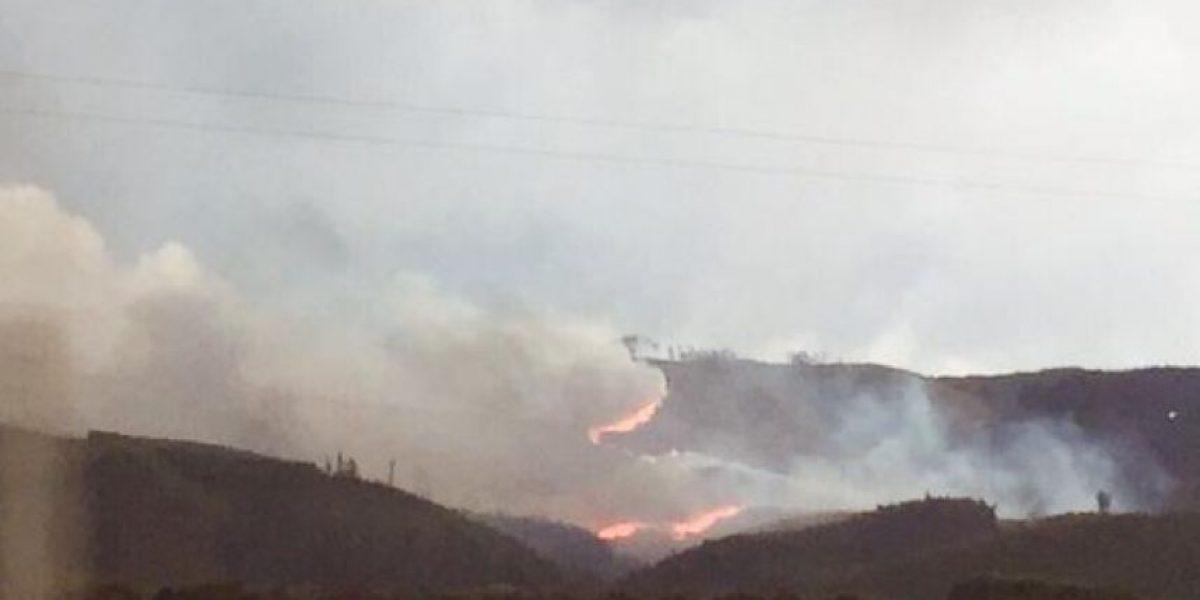 Cerca de 30 hectáreas han sido consumidas en el violento incendio forestal de Arauco