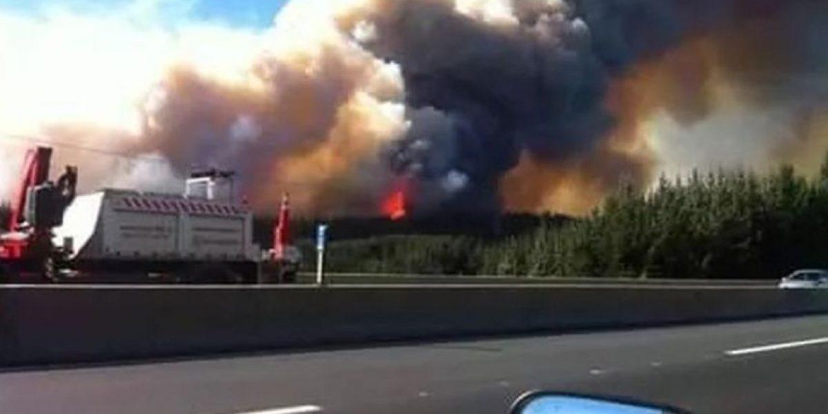Feroz incendio forestal en San José de Colico amenaza las viviendas del sector
