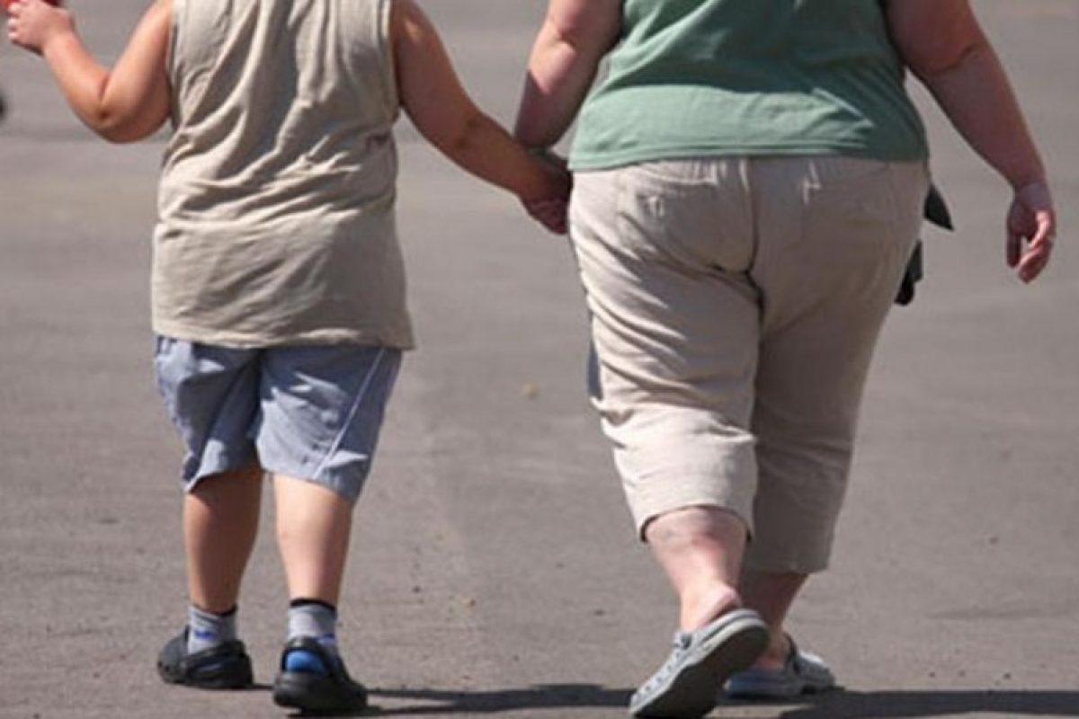 Rebecca Robker también había observado que las madres obesas no respondieron bien a tratamientos de fertilidad y que tenían tendencia al aborto espontáneo. Foto:Pinterest. Imagen Por: