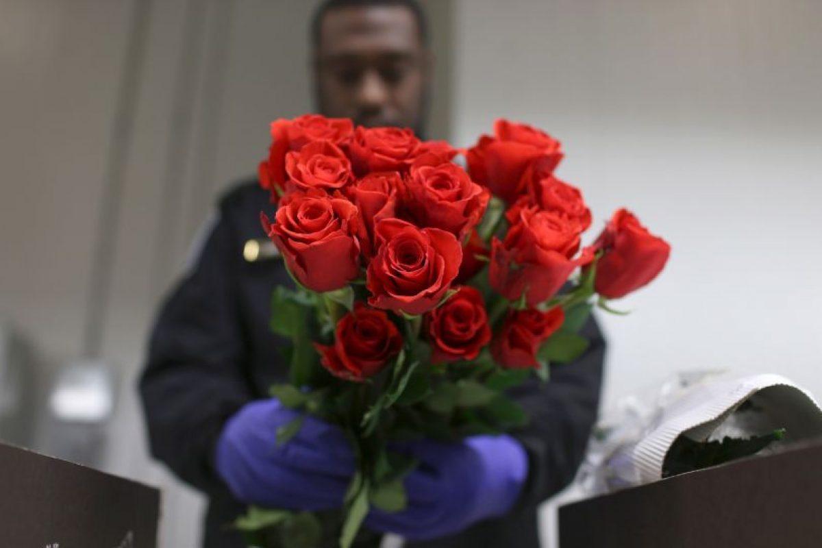 Policías inspeccionan flores en Miami Foto:Getty Images. Imagen Por: