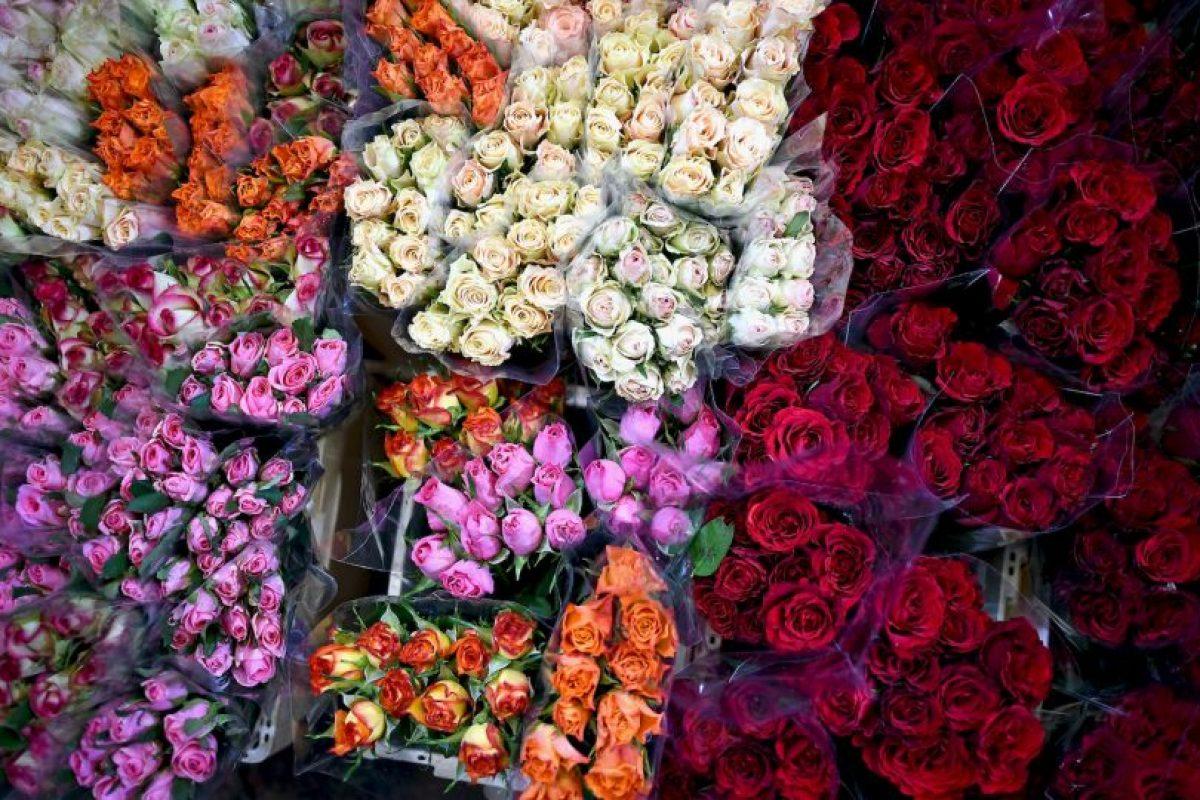 Los preparativos en el Mercado de Flores de Escocia Foto:Getty Images. Imagen Por: