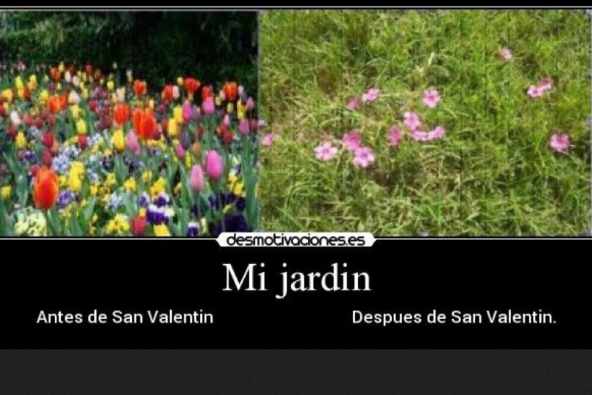 Foto:Tumblr.com/Tagged-Después-San-Valentín. Imagen Por:
