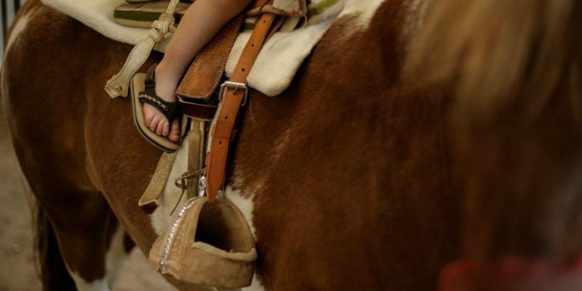 Niño de 9 años murió tras ser arrastrado por un caballo en Rancagua