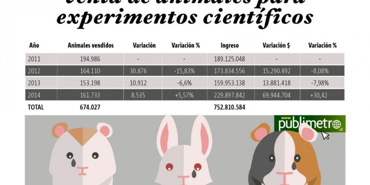 Más de 160 mil animales se vendieron en Chile para utilizar en experimentos el 2014