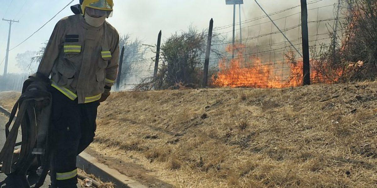 Alerta Roja por incendio forestal en Curacaví: cuatro damnificados